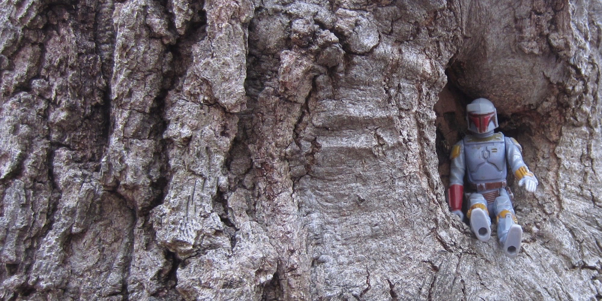 Boba Fett Sitting In A Tree