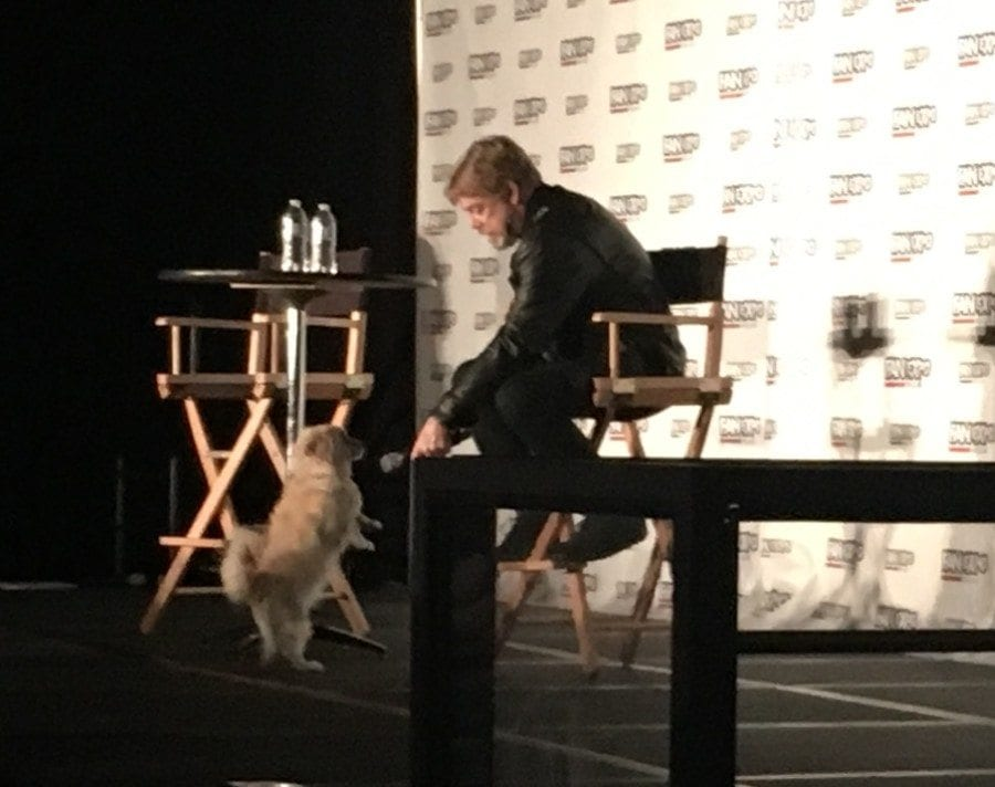 Fan Expo Dallas - Mark Hamill Panel