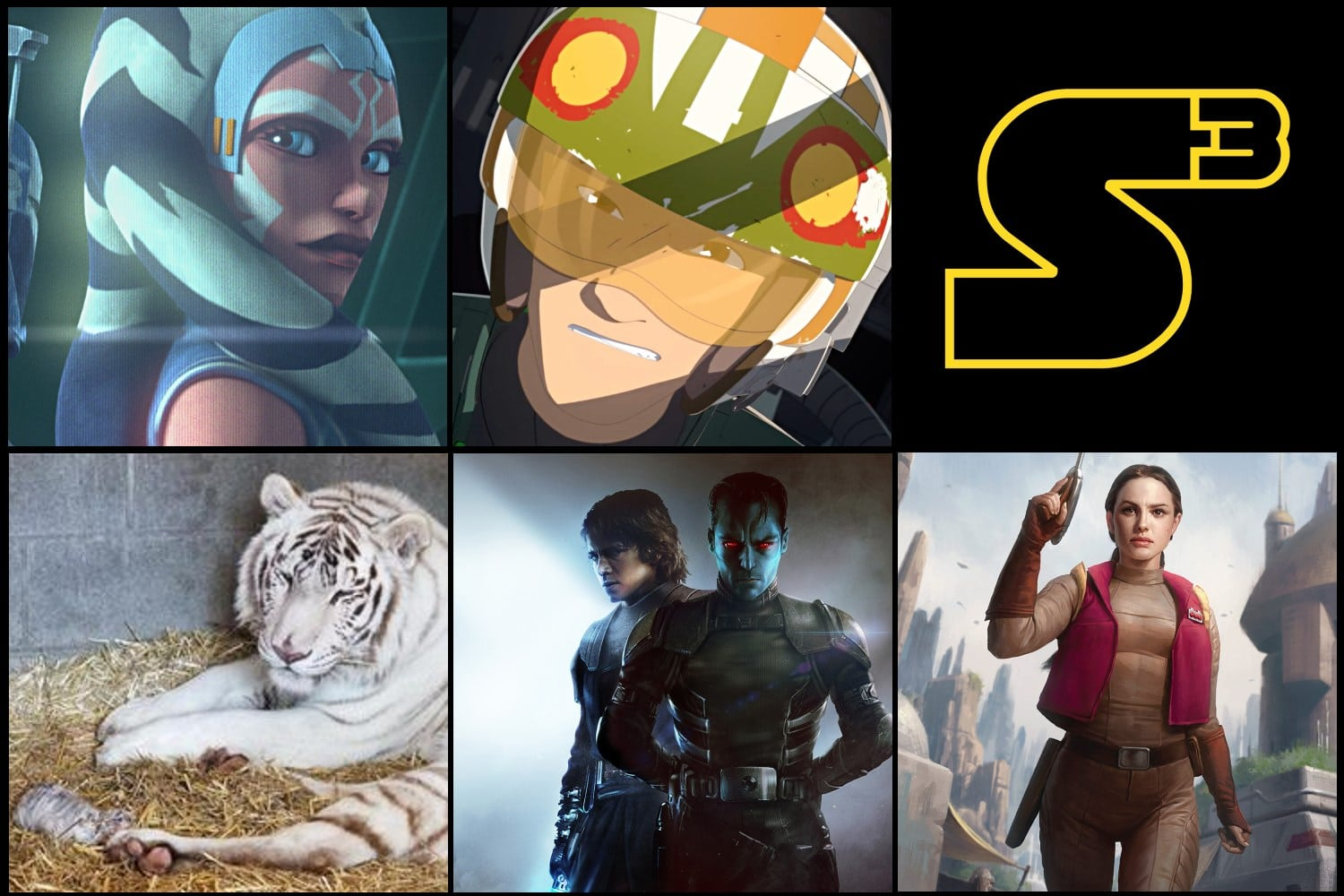 Starships, Sabers, and Scoundrels episode 62 - Thrawn, Tigers, and Television. Show image.