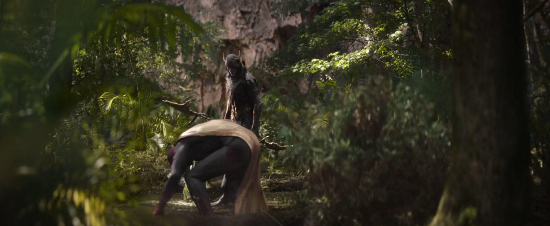 Wakanda Forest