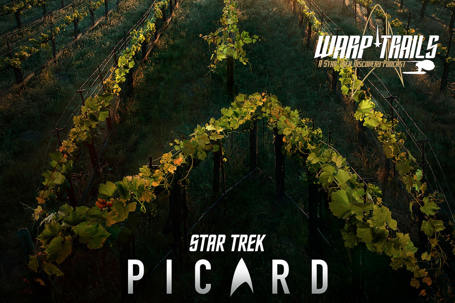 Warp Trails - Picard Developments - Teaser