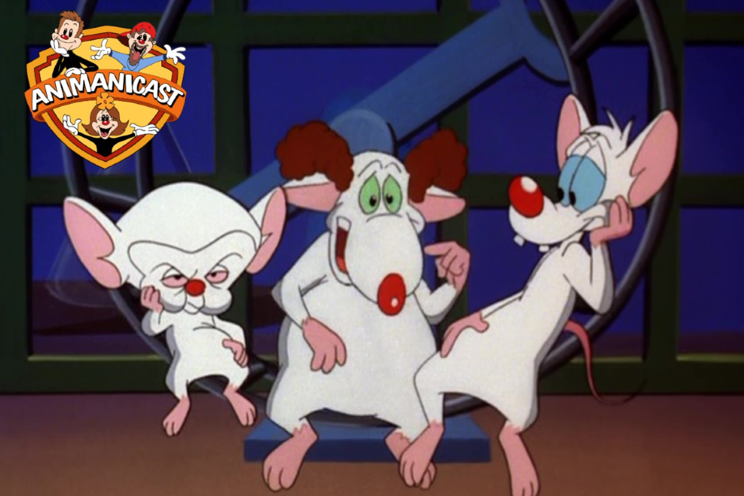 Pinky and the Brain and Larry