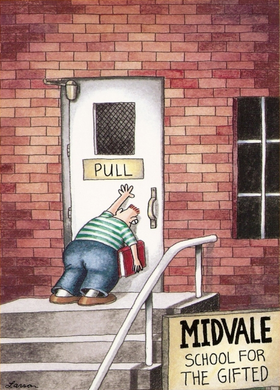 Far Side Gifted